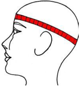 Correct way to Measure Head