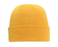 Image Otto Knit Beanie Cap 12