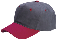 Image Cobra-5 Panel Low Profile Brushed Material Cap