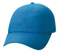 Image Sportsman-Budget Caps 6 Panel Classic Dad's Valuecap Bio Washed Twill, 49 colors