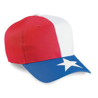Image Cobra-Budget Caps 6-Panel Texas Flag
