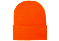 Image Yupoong-Thinsulate Cuffed Beanie