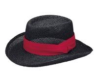 Image Mega-Straw Hat