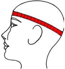 Cap Size Charts Wholesale Caps